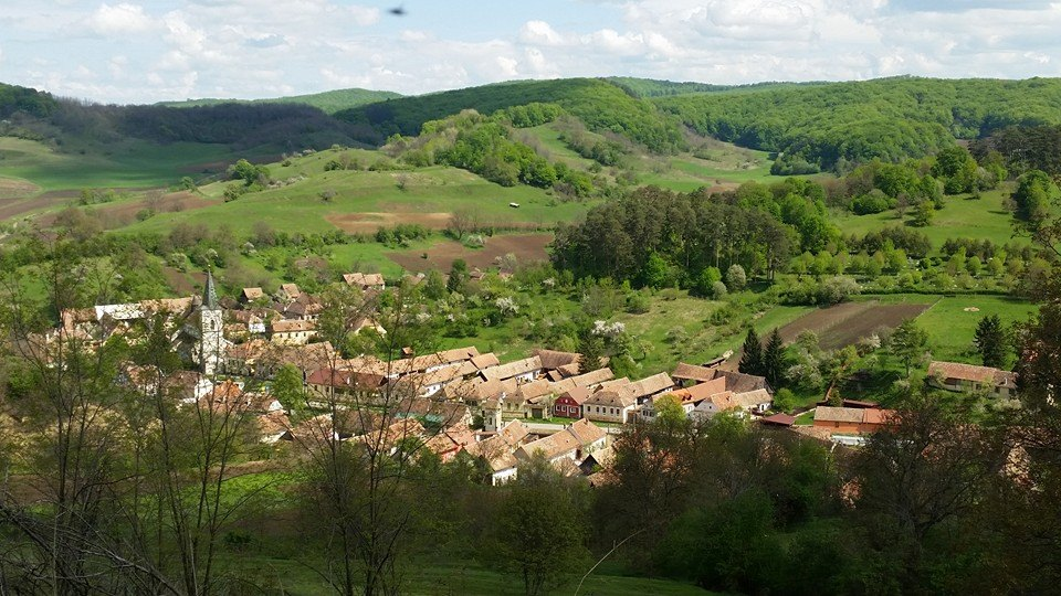 Festivalul-transilvanean-al-cartii-la-Richis