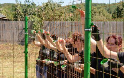 Gold Plast marchează 10 ani de prezență în România prin acțiuni de implicare în comunitate