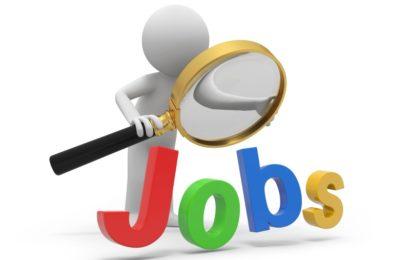 5000 de joburi în cadrul Angajatori de TOP Virtual