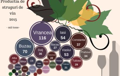 Analiză KeysFin: producția de vin a României a crescut cu 37%