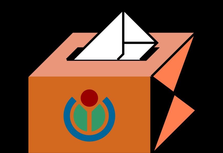 A fost lansata busola electorala Votul Meu