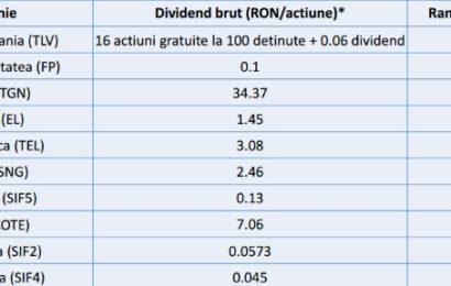 Tradeville: Companiile românești au plătit cele mai consistente dividende din lume