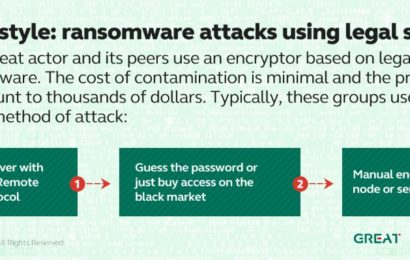 Kaspersky Lab: Atacurile DDoS care afectează organizațiile sunt în creștere