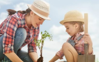 MOL Romania finanteaza  50 de proiecte de mediu