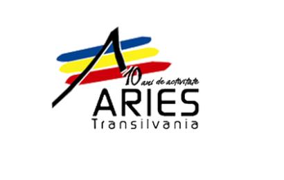 ARIES Transilvania : studiu de piață al industriei de software și servicii IT