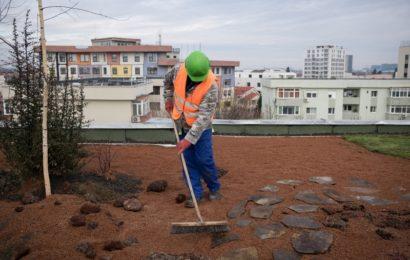 IKEA România finanțează proiectele selectate în Fondul IKEA pentru Mediul Urban