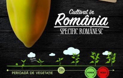 """Lidl extinde oferta proiectului """"Cultivat în România, specific românesc"""""""
