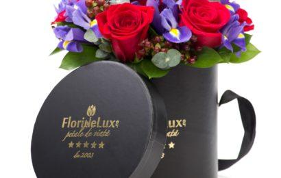 Grupul FlorideLux mizează pe afaceri de 1,2 mil. euro anul acesta