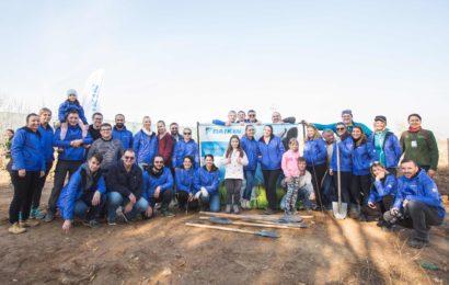 Daikin Romania a plantat peste 6.000 de copaci, prin programul Plantam Aer