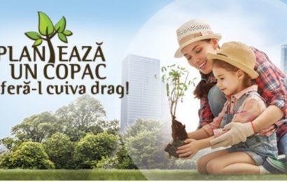 """Campanie Unilever: """"Planteaza un copac si ofera-l cuiva drag!"""""""